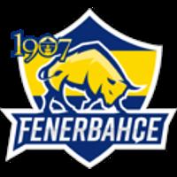 Fenerbahçe Academy