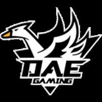 DAE Gaming