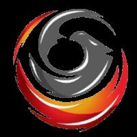 Eanix-team-logo