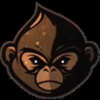 Funky-monkeys-fm