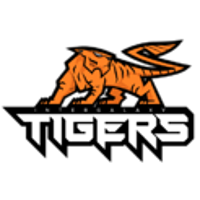 Intergalaxy Tigers Gaming