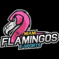 Miami Flamingos eSports