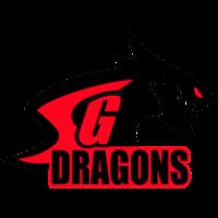 Sterling Global Dragons logo