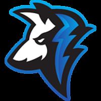 Surge eSports Club