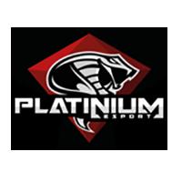 Platinium Esports