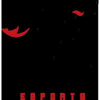 Zenith E-Sports