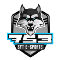 SFTe-sports