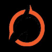 Team Skyfire logo