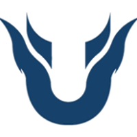 Team Unique - logo