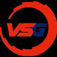 Team VSG
