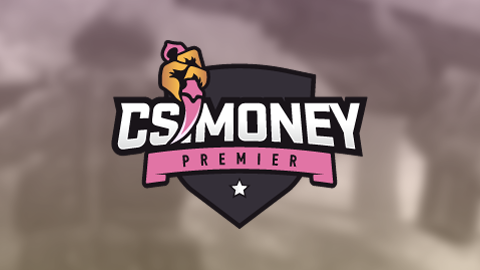 CS Money Premier by EM